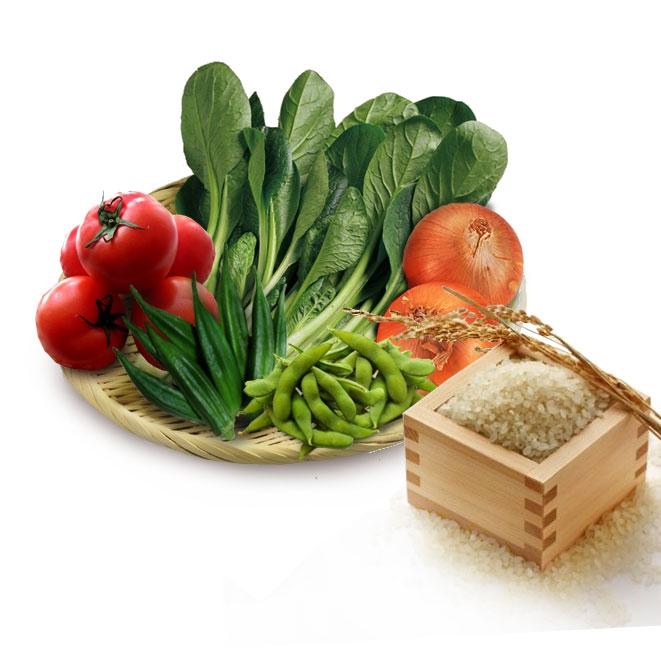 野菜詰め合わせセット
